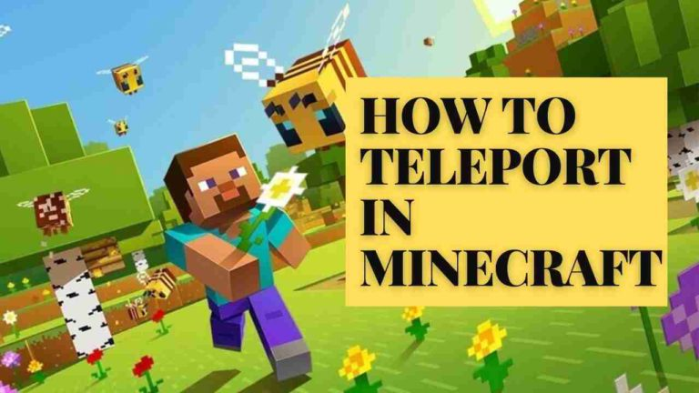 How to Teleport in Minecraft? Minecraft Teleport Command?